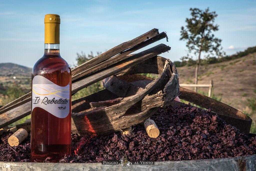 Rebellato - vino poggio al vento